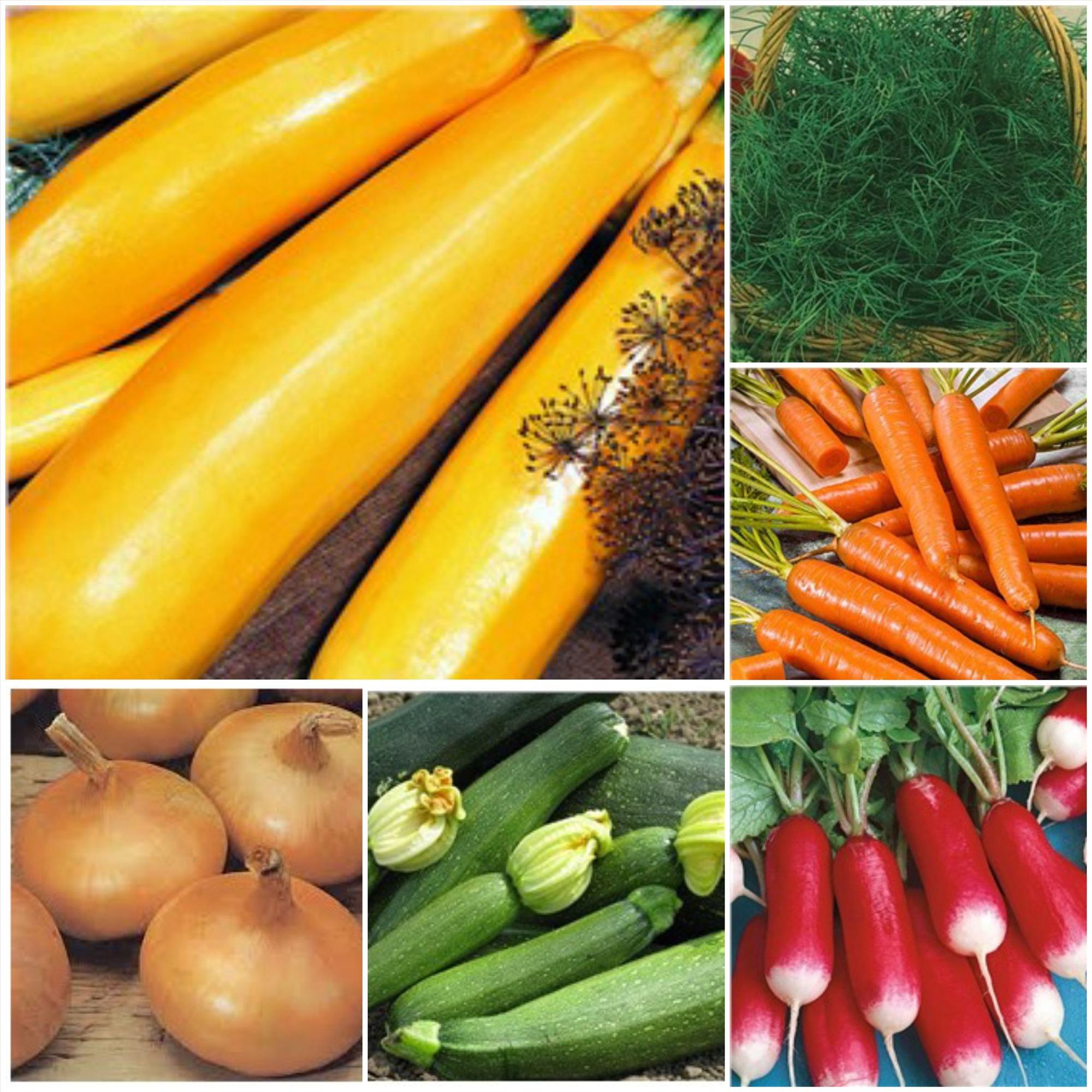 семена овощей и цветов фото как-то